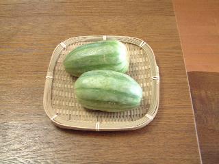 瓜(うり) 晩夏 – 季語と歳時記
